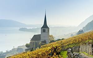 Обои Озеро Виноградник Церковь Швейцария Тумане Lake Biel Природа