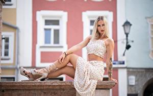 Картинка Блондинка Сидя Платья Юбки Майки Взгляд Боке Laura молодая женщина