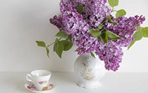 Обои Сирень Натюрморт Сладости Ваза Чашка Цветы