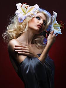 Обои Лилии Цветной фон Блондинка Руки Девушки