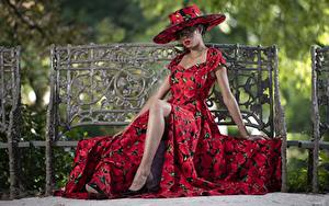 Картинка Платье Сидящие Фотомодель Шляпа Скамейка Ноги Lilly Девушки