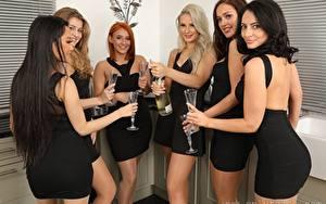 Обои Louisa Lu Becky Bond Lucy Ava Hollie Q Robyn J Paige F Only Брюнетка Рыжая Блондинки Смотрит Улыбается Рука Бокал Платья девушка