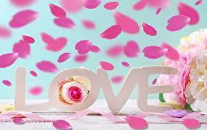Картинка Любовь День всех влюблённых Лепестков Английский Текст