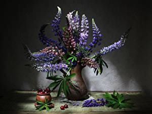 Фотографии Люпин Вишня Вазы Цветы