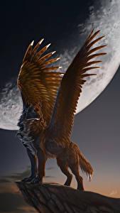 Картинки Волшебные животные Волки Крылья Луна Ночь Фэнтези