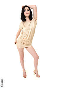 Обои Malena Fendi iStripper Белым фоном Поза Платья Брюнетки Руки Ноги Туфли Девушки