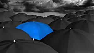 Картинки Много Зонт Синий Черный