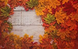 Обои для рабочего стола Клёна Листья Доски Шаблон поздравительной открытки