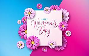 Фотографии Международный женский день Цветной фон Слова Английская цветок