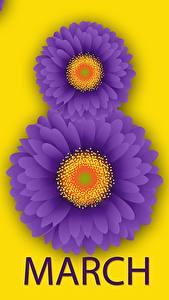 Фотографии 8 марта Гербера Английская Цветы