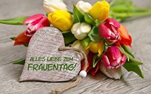 Картинки Международный женский день Тюльпан Немецкий Сердце Цветы