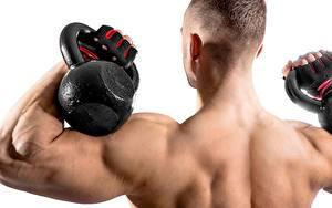 Картинка Мужчины Бодибилдинг Гантелями Парни Мускулы Спины Белом фоне спортивная