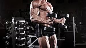 Картинки Мужчины Бодибилдинг Тренируется Мускулы Шорты Руки Гантели спортивные