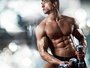Картинка Мужчины Фитнес Бодибилдинг Гантелями Мышцы Красивые Спорт