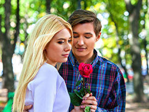 Фото Мужчина Любовь Розы Двое Блондинка Девушки