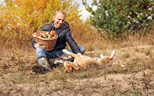 Фотографии Мужчины Грибы Собака Корзина Сидящие Улыбается Играют