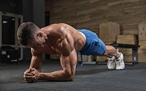 Фотография Мужчины Физическое упражнение Мускулы Рука Спорт