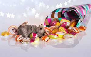 Картинка Мыши Сладкая еда Конфеты