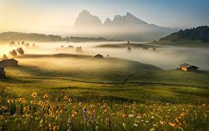 Фотография Утро Горы Италия Луга Туман Альп Трава Dolomites
