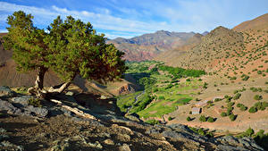 Фотографии Марокко Горы Камень Дерево Atlas Mountains Природа