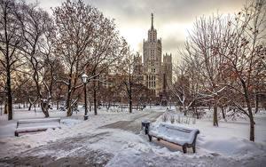 Фото Москва Россия Парки Зима Снег Скамейка Дерево Города
