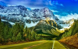 Обои Горы Лес Дороги Канада Парки Скалы Снеге Асфальта Банф Природа