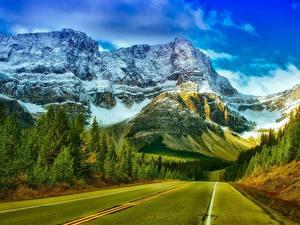 Обои Горы Лес Дороги Канада Парки Скалы Снеге Асфальта Банф