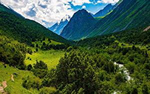 Фотография Горы Облака Дерево Issyk-Ata Gorge, Kyrgyzstan