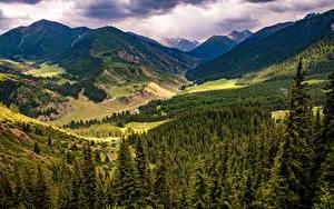 Фото Гора Дерева Облачно Долина Kok Jayik valley, Kyrgyzstan