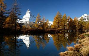 Фотографии Гора Озеро Швейцария Дерево Отражении Grindjisee Природа