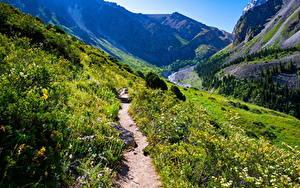 Обои Горы Парк Тропы Скале Ala Archa National Park, Kyrgyzstan