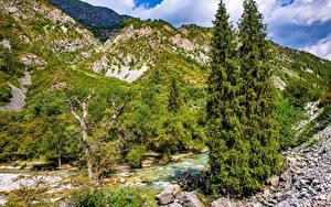Фото Горы Реки Камни Дерево Kara-Kamysh, Kyrgyzstan