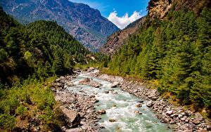 Фотографии Горы Реки Камень Дерево Lukla, Nepal Природа