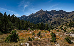 Обои Гора Камни Небо Андорра Дерево Pyrenees Природа