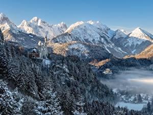 Фото Гора Зима Лес Замок Германия Пейзаж Альпы Бавария Neuschwanstein Castle Природа