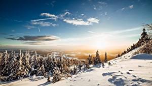 Фотография Гора Зимние Пейзаж Небо Снегу Дерева Солнца Ель