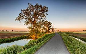 Обои Нидерланды Дороги Поля Мельница Деревья Alblasserwaard