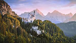 Обои Нойшванштайн Горы Лес Замки Германия Бавария