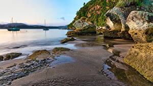 Фотография Новая Зеландия Побережье Камни Скала Песок Cooks Beach, Waikato Природа