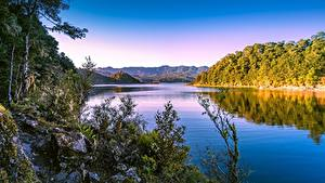 Картинки Новая Зеландия Гора Утро Озеро Lake Waikaremoana