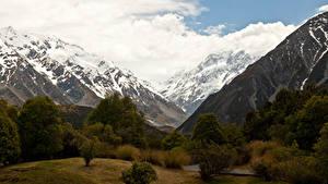 Фотографии Новая Зеландия Горы Деревья Снег Mount Cook National Park