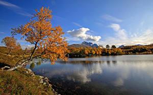 Обои Норвегия Осень Озеро Небо Дерево Kilstivatnet