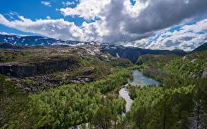 Картинки Норвегия Лес Парк Речка Гора Пейзаж Облачно Утес Rago National Park Природа