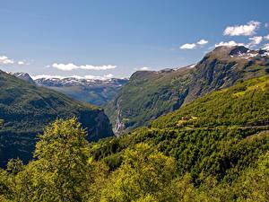 Фотография Норвегия Гора Леса Каньон Geirangerfjord