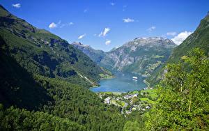Обои Норвегия Гора Лес Здания Залива Мха Geiranger Fjord
