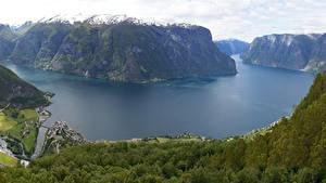 Обои Норвегия Горы Леса Скале Sognefjord, Sogn-og-Furan Природа