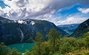 Обои Норвегия Гора Парк Облачно Дерево Folgefonna National Park