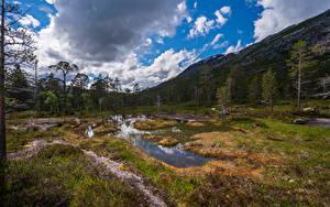 Обои для рабочего стола Норвегия Парк Гора Дерева Облака Rago National Park Природа