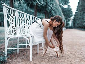 Фотографии Парки Балет Скамейка Шатенки молодая женщина
