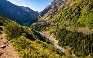 Картинка Парк Горы Деревья Ручей Ala Archa National Park, Kyrgyzstan